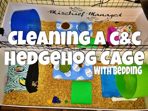 Cleaning a Hedgehog C&C Cage (with bedding) 2015