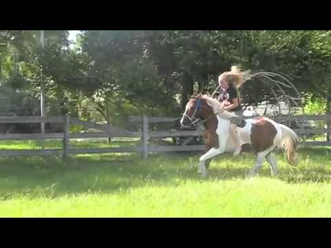 Making our Barrel Horses Jump!