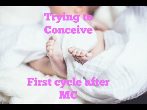 Trying for baby after a miscarriage! First Cycle Update