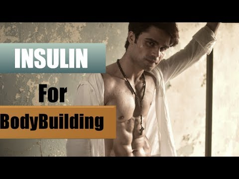 INSULIN For Bodybuilding |Muscle Building Messenger