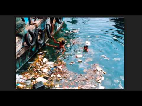 Water Pollution Pic Video us 458