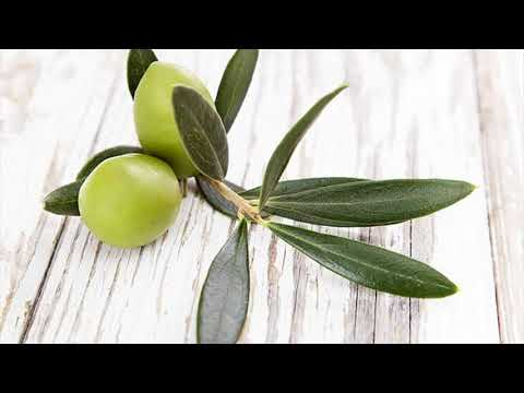 Olive Tree Extract For Chlamydia Men And Women- Home Remedy For Chlamydia