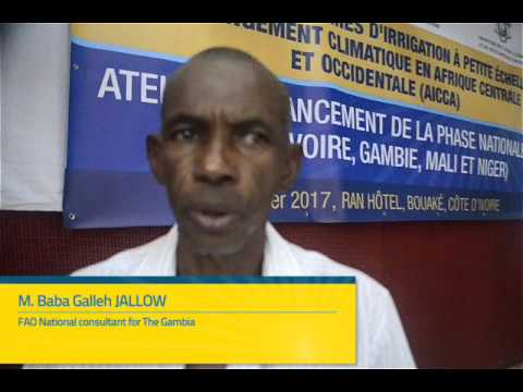 Interview of M. Baba Galleh JALLOW, FAO National consultant for The Gambia