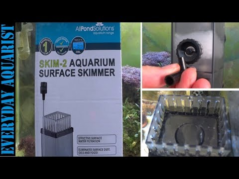 Aquarium Surface Oil Film SOLVED Surface Skimmers Explained