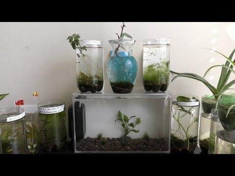 HD Aquarium DIY
