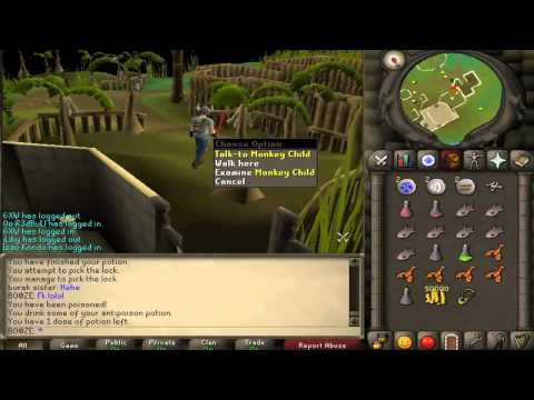 Runescape 2007- How to get monkey greegree back
