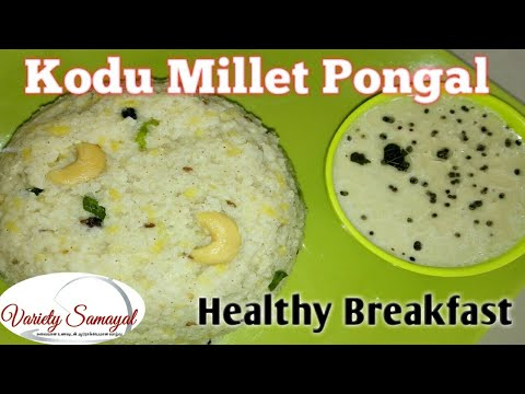Kodu Millet Pongal| Varagu Arisi Pongal| Variety Samayal
