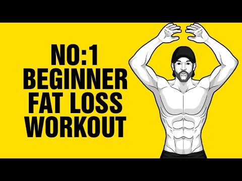 12min Beginner Fat Loss Home Workout - How To Lose Belly Fat - Sixpackfactory