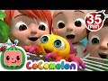 Itsy Bitsy Spider More Nursery Rhymes Cocomelon ABCkidTV