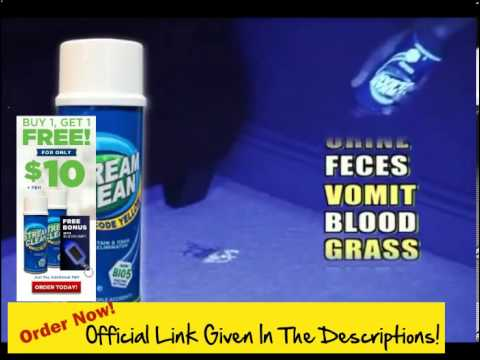 How To Get Blood Stains Out Of Carpet! Get Stream Clean ! The Stand Up Way To Blast Pet Stains & Odo