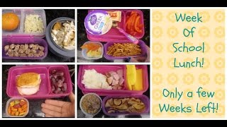 Week of School Lunches + What she ate!