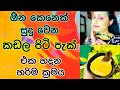 Download මම ආසම කඩලපිටි පැක් එක | Magical Skin Whitening Face Pack With Gram Flour MP3,3GP,MP4