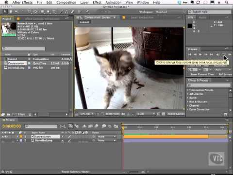 Adobe After Effects CS5 Tutorials - Edit Video, Loop Footage Part No.2