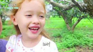 Download 한국기행 - Korea travel 우리동네 이방인 1부 과수원집 맏며느리 애린이 #001 Video