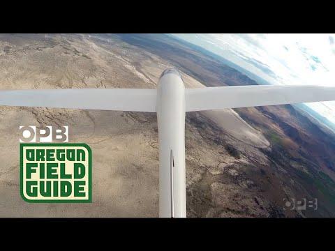 Gliders Above Alvord Desert