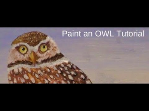 How to Paint an Owl with Acrylic paint Lesson 2, How to paint owl Eyes,  Starting the Owl