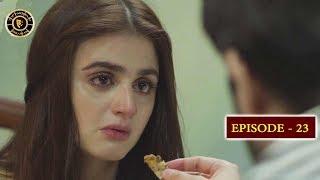 Do Bol Episode 23   Top Pakistani Drama   Hira Mani & Affan Waheed