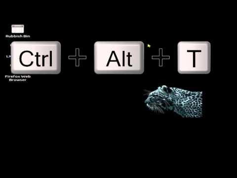 Keyboard shortcut to open terminal in lubuntu