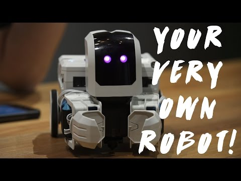 Your Very Own Programmable Robot! - Is AI Taking Over??