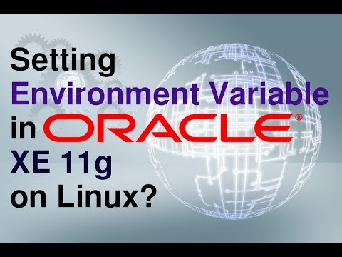 How to set Environment Variables in Oracle Database XE 11g in Linux?