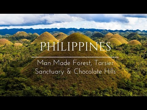 Bohol Chocolate Hills Drone, Tarsier Sanctuary & The Man Made Forrest | Vlog 46