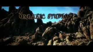 Organic Studios
