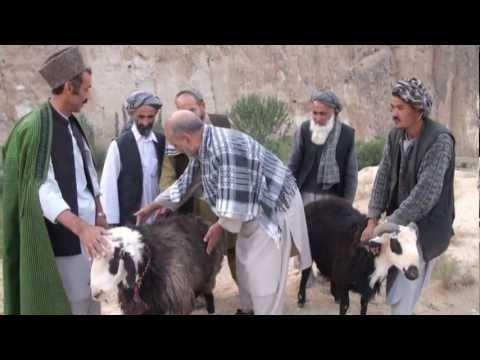 Rug Making in Northern Afghanistan