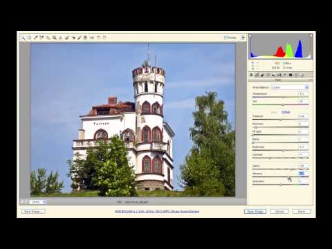 Open PSD in Camera RAW in Photoshop CS5