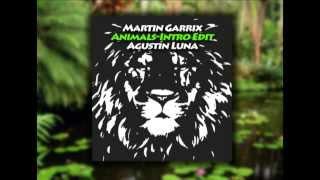 Martin Garrix -Animals (Agustín Luna Intro Edit)