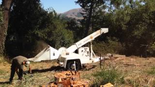 Altec WC612 Whisper Chipper Tree Wood Brush Test and Review
