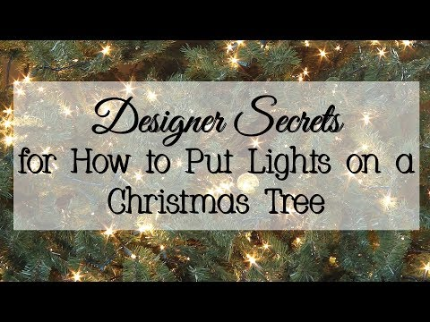 Designer Secrets for How to Put Lights on a Christmas Tree