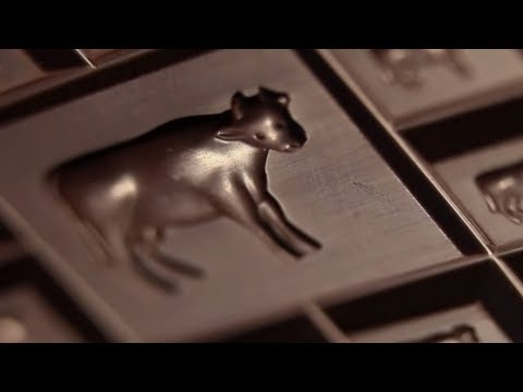 The History of the Elite Chocolate Company