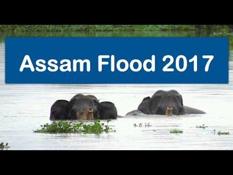 Assam flood July 2017. Lakhimpu, Jorhat,  Hojai, Golaghat, Sivasagar and Sonitpur worst hit.