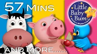 The Pig Eats An Apple | Plus Lots More Nursery Rhymes | 57 Minutes Compilation from LittleBabyBum!