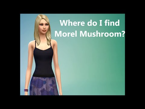 Sims 4 FAQ: Where do I find Morel Mushroom?