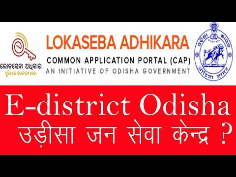 E-district loka seba Odisha का पोर्टल कैसे लेते है│By Digital Seva Portal