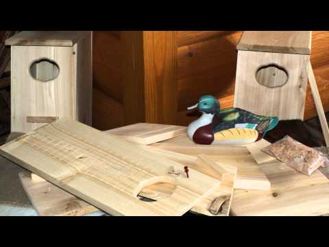 Build and Place a Wood Duck Nesting Box Earn a Badge
