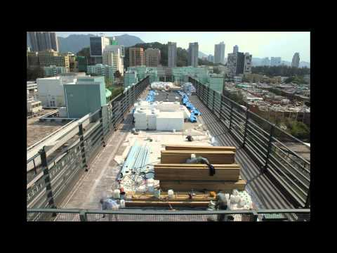 How to make a green roof in 3 minutes and 59 seconds