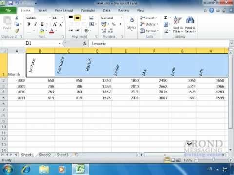 Using Excel 2010 - Rotate Text Within a Cell