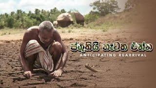 ස්තුතියි නැවත එන්න | Sthuthi Newatha Enna | Sinhala Movie | Hemasiri Liyanage | Damitha Abeyratne