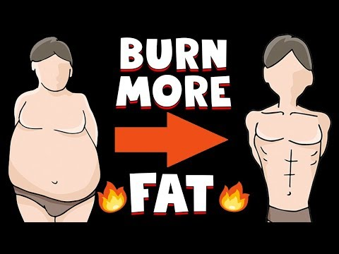 The 3 Biggest Diet Lies To Burn Fat (STOP Doing These!)