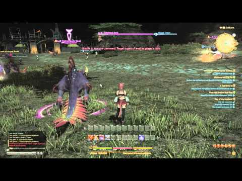 Final Fantasy XIV: A Realm Reborn Beta (PS4) Mouse + KB Gameplay