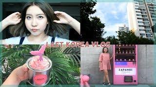 Download LAST KOREA TRAVEL VLOG (until next time) Video