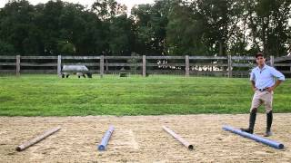 A Simple Three Part Gymnastics Exercise: For Your Horse...