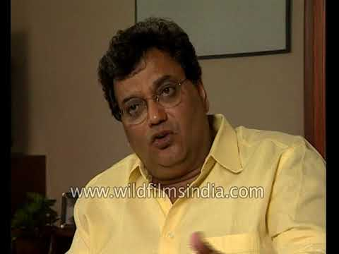 Subhash Ghai: South Indian girls perform well in comparison to North Indian