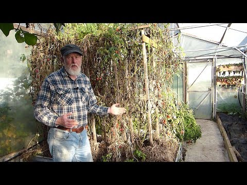 Strawbale Garden - What Happens at the END of the Season?