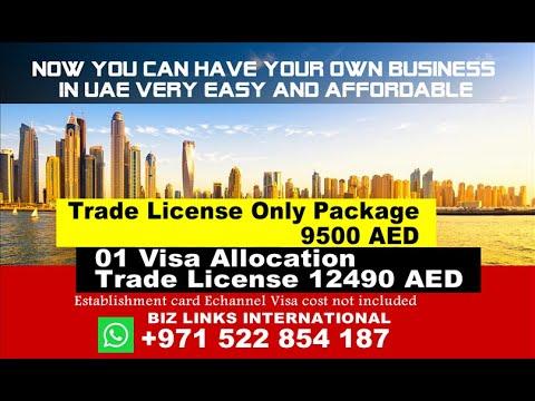 1965 AED Monthly Lowest UAE Dubai Sharjah Ajman RAk Fujairah Trade License