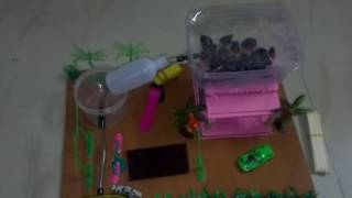 Rain Water Harvesting - Working Model - Science and Technology Projects