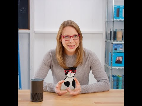 Meet Alexa: Calling & Intercom