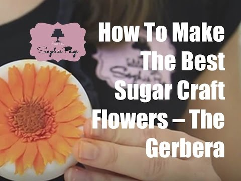 Cakes by Sophie Page - Making Sugar-Craft Flowers - The Gerbera
